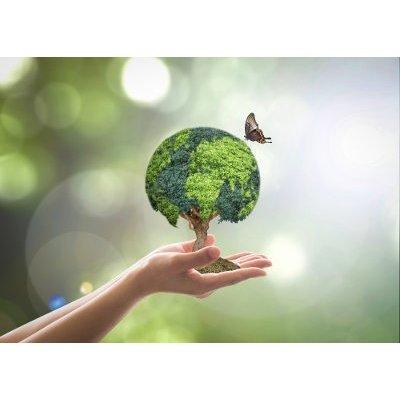 Implementación de la norma ambiental ISO 14001